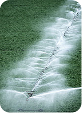 Sprinkler, Irrigation Systems in Nantucket, MA